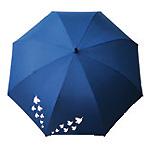 Parapluie automatique (bleu)